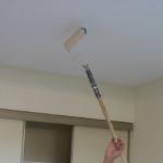 Руководство по нанесению водоэмульсионной краски на потолок