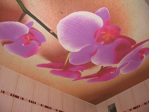 Тканевый натяжной потолок с ярким рисунком