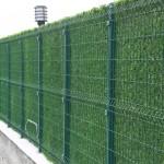 Декоративный зеленый забор. Как при всем при этом не потратить астрономическую сумму денег?