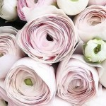 Какие букеты цветов бывают?